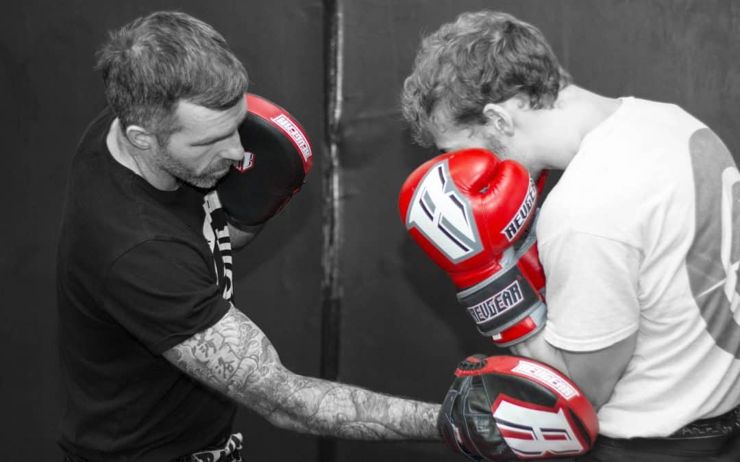 Revgear S3 Boxing Glove Review