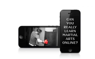 Can you Learn Martial Arts Online?  The Modern World of Digital Training, Tuition and Coaching!